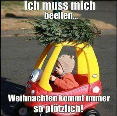 Fresh Christmas trees are the best Christmas trees Funny Kids, Funny Cute, Hilarious, Christmas Jokes, Good Morning World, Cool Christmas Trees, Christmas Ideas, Christmas Decorations, Adult Humor