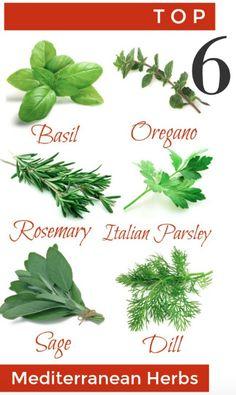 Easy Garden, Herb Garden, Garden Ideas, Mediterranean Garden, Gardening Tips, Outdoor Living, Herbs, Create, Simple