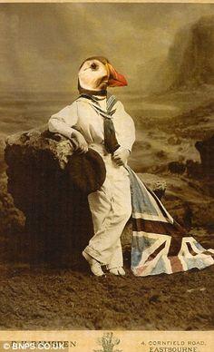 The Queen is a fan of wacky artist Charlotte Cory's stuffed animal portraits | Mail Online