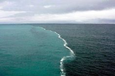The Sea Barrier Miracle Where Two Oceans Meet But Do Not Mix. Gulf of Alaska!