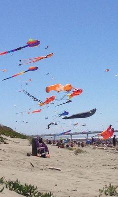 Kite Day in New Brighton Kites For Kids, Kite Designs, Gulf Shores Alabama, City Library, New Brighton, Around The Worlds, Libraries, Day, Dragons