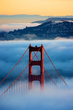 San Francisco Golden Gate bridge and fog(Favorite Places San Francisco) Oh The Places You'll Go, Places To Travel, Places To Visit, Dream Vacations, Vacation Spots, Puente Golden Gate, Lac Tahoe, San Francisco California, California Usa