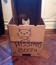 I've seen a kissing booth before but never this !!