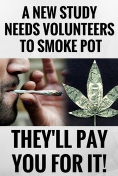 A NEW STUDY NEEDS VOLUNTEERS TO SMOKE POT—AND THEY'LL PAY YOU FOR IT! ((,