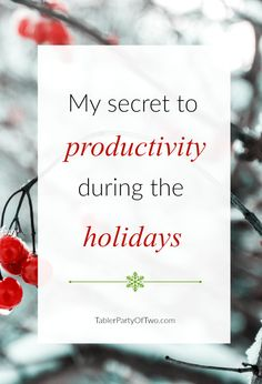 My Secret to Productivity during the Holidays! Stay on top of things... keep your sanity... remain balanced this year! TablerPartyofTwo.com