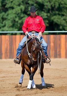 Downunder Horsemanship | Training Tip of the Week: Sidepass for overall body control