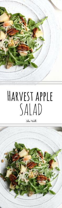 Harvest Apple Salad is the perfect recipe for fall, Thanksgiving or Christmas! // Great for people who are vegetarian, gluten-free and can be made vegan! Click to read now or pin for later!