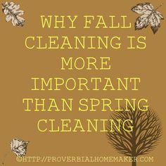 Is Fall Cleaning more important than spring cleaning? I think so - and here is why! Is Fall Cleaning more important than spring cleaning? I think so - and here is why!