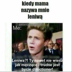 One Direction Humor, Band Memes, 1d And 5sos, Idol, My Love, Niall Horan, Funny, 1direction, Louis Tomlinson