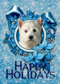 Westie Christmas Card...This picture reminds me of my Jack.