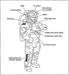 Composition and components of an astronaut's space suit, or Extravehicular Mobility Unit (EMU). This is used during an EVA. Astronaut Space Suit, Space Colony, Space Rocket, Science Experiments Kids, Space Travel, Business For Kids, Nasa, Coloring Pages, Diagram