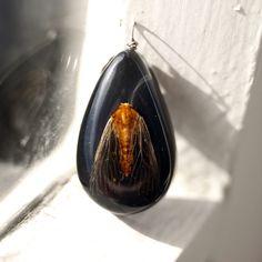 night butterfly pendant