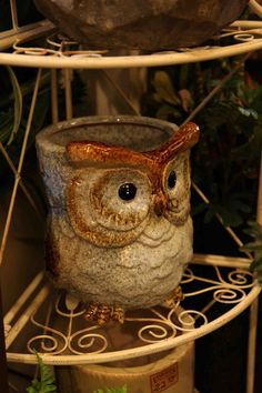 pretty decorative owl planter / container / pot in blues browns  Evergreen Lake of the Ozarks  home decor store
