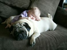 Dog and baby - hope this is jellybean and Capt Jack
