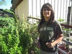 How to Harvest & Store Seeds by Texas Ready Seed Bank