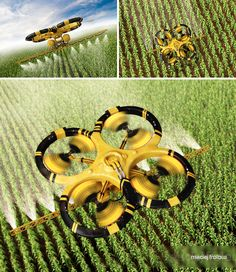 Flying utility drone spraying pesticide over a corn field.