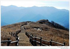 Mt. MinDoong, Korea
