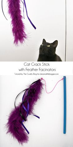 DIY cat toys are best! They last longest and are loved so much. See how to make your own Cat Crack Stick with RaChil from The Cwafty Blog!
