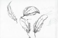yen-wen's art illustration: storyboard and sketch for the dancing feather