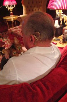 Adorable Kitteh Snuggles With A Deaf Man