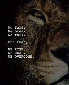 Here in this article we have shared 60 best motivational quotes, inspirational quotes, success quotes and positive life quotes. Wolf Quotes, Wisdom Quotes, True Quotes, Great Quotes, Motivational Quotes, Inspirational Quotes, Qoutes, Loner Quotes, Citation Lion