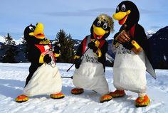 ©OT morzine -Morzine-Avoriaz Le club Piou-piou de morzine et ses pinguin-mascottes #piou-piou #morzine #avoriaz #ski #montagne #pinguoin #déguisement #snow