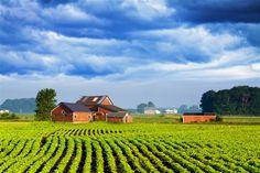 Costruire casa su terreno agricolo, come fare? http://magazine.ferratisrl.it/2017/03/27/costruire-casa-su-terreno-agricolo/ #costruirecasa
