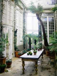 Would love a conservatory for so many reasons.  Somewhere to escape to in the Winter, read a book, revitalise plants and create new ones.......the list is endless.