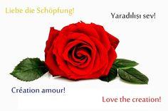 Gedichte und Liedtexte von Önder Demir: Liebe die Schöpfung! - Love the creation! - Créati...