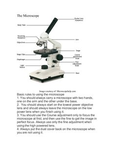 Labeling the parts of the microscope blank diagram available for the microscope image courtesy of microscopehelp basic rules to using the microscope 1 ccuart Image collections