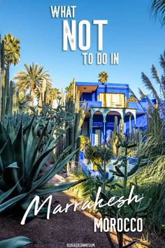 What NOT to do in Marrakesh (and what to do instead) - Global Castaway Find out all the things not to do in Marrakech Visit Marrakech, Marrakech Travel, Morocco Travel, Marrakech Morocco, Africa Travel, Visit Morocco, Vietnam Travel, Africa Destinations, Travel Destinations