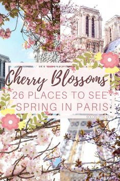Here's a little guide on where to find the very best cherry blossom trees in Paris. 26 locations and recommendations are listed in total, as well as tips on when to visit and what to bring!