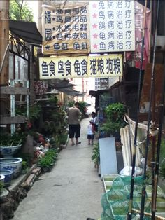 My first alley in Yantai, China