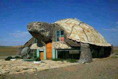 Dieses Haus hat sich zum Rosenmontag als Schildkröte verkleidet