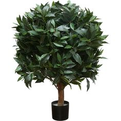 Brucs Sweet Bay Ball Artificial Plant Large (385 CAD) ❤ liked on Polyvore featuring home, home decor, floral decor, green, fake plants, artificial plants, outdoor home decor, outside home decor and outdoor artificial plants