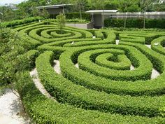 Maze Garden @ Junes family / holiday home in Kuala Lumpur Malaysia  Great for the little ones. And for a rest bfor the bigger ones.
