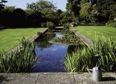 Tintinhull Garden, Farm Street, Yeovil, Somerset 2
