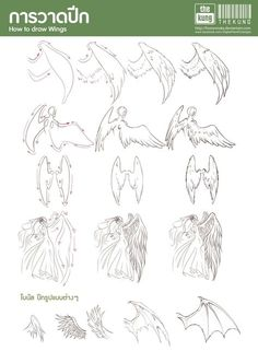 Manga Drawing Tips How to draw Wing by fusionnuke on deviantART - Drawing Techniques, Drawing Tips, Drawing Reference, Drawing Sketches, Sketching, Anatomy Reference, Drawing Lessons, Wings Drawing, Drawing Base