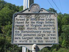 Mingo County, WV formed in 1895