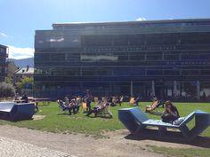 University of Innsbruck. Chilling on a summer's day. Innsbruck, Summer Days, Beautiful Places, Basketball Court, Life
