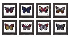 Arty Butterfly Framed Glass Wall Decor ? Assorted 8