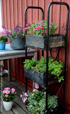 Föregående artikel Garden Junk, Love Garden, Dream Garden, Home And Garden, Wood Crate Diy, Wooden Crates, Dyi Garden Ideas, Bloom Where Youre Planted, Garden Structures