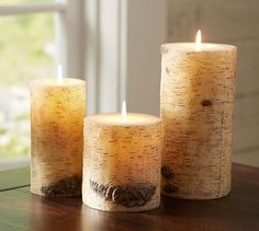 Pottery Barn knockoff: DIY birch candlesLiving Rich on Less