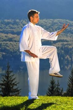 Tai chi is able to restore good health to people who have high blood pressure, back pain, respiratory problems, skeletal problems.it's easy and an excellent exercise routine. Tai Chi Chuan, Tai Chi Qigong, Qi Gong, Types Of Meditation, Yoga Meditation, Tai Chi Exercise, Learn Tai Chi, Common Myths, Traditional Chinese Medicine