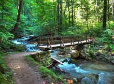 10 Out Of This World Summer Day Trips To Take In Virginia