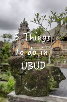 Ubud has so much more to offer than just a visit to the Sacred Monkey Forest… and it's a place where you could easily lose track of time between rice fields, yoga, palaces, organic food…