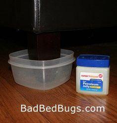 Exceptional Bed Bug Climb Up Blocker