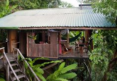 The Universal One Church is located in Carrabelle, Florida located within beautiful Franklin County. Cool Tree Houses, Fairy Houses, Tree House Deck, Tree House Accommodation, Tree Design On Wall, Jungle House, Thai House, Bamboo House, Hawaii Homes