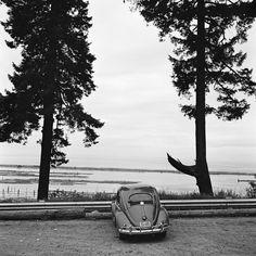 Vivian Maier - Canada, 1954 - Howard Greenberg Gallery