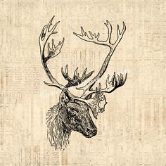 Antique deer art print with a vintage script antique text paper style printed background.
